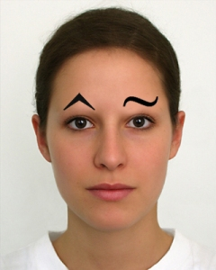 eyebrow accents