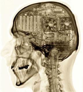 mammalian-brain-computer-inside