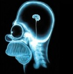 xray-of-homer-simpsons-tiny-brain-295x300